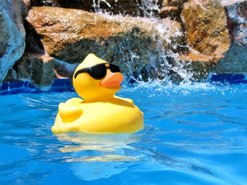 RubberDuckyPoolParty-2537